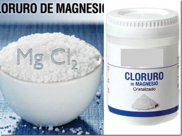 cloruro-portada-e1444278980438