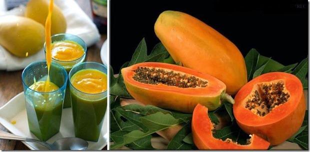papaya para intestinos