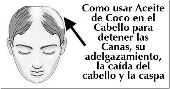 Como-usar-aceite-de-Coco